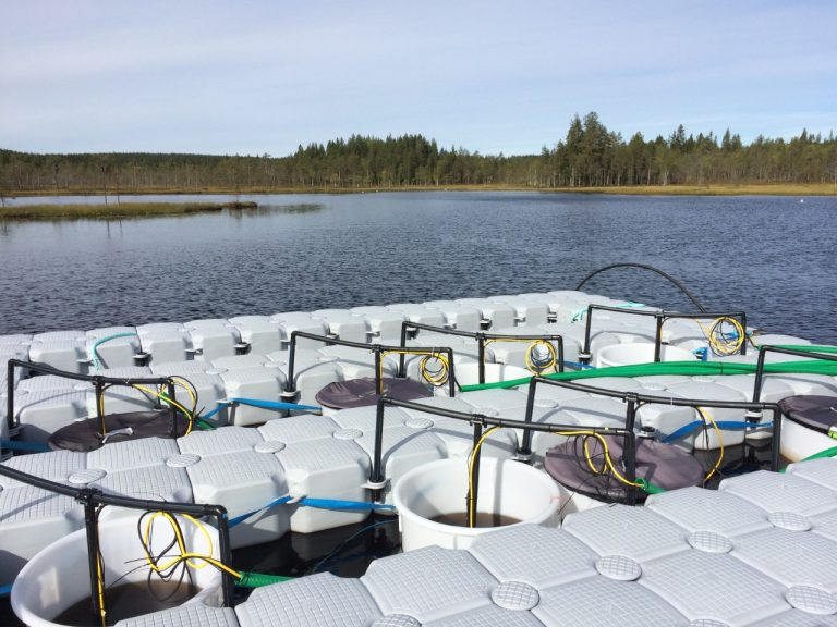 SITES AquaNet – Svartberget Research Station